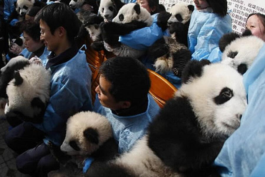 Kung Fu Panda 2 How Real Life Informs A Fantasy Csmonitor Com