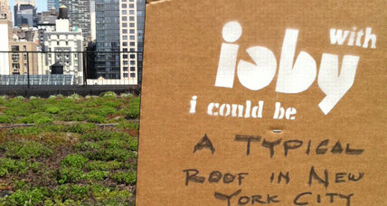 Earth Day: Ioby (In Our Back Yard) brings climate change efforts down to the grass-roots