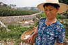 China's farmers see hope in effort to stem soil erosion caused by Three Gorges Dam
