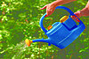 A watering can with added benefits