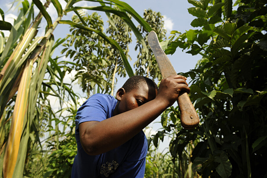 New rules needed for African farm investments, Oxfam report says