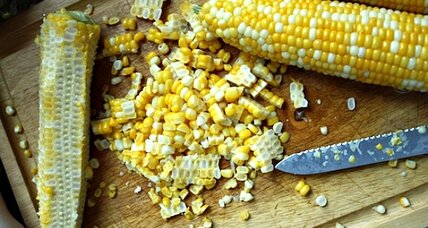 Fresh corn for the freezer
