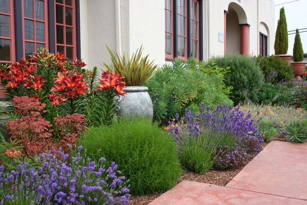 water wise garden designs. Traditional Mediterranean plants such as olives  lavender and other herbs Italian cypress mix with boldly colored garden to create the For a waterwise landscape consider design