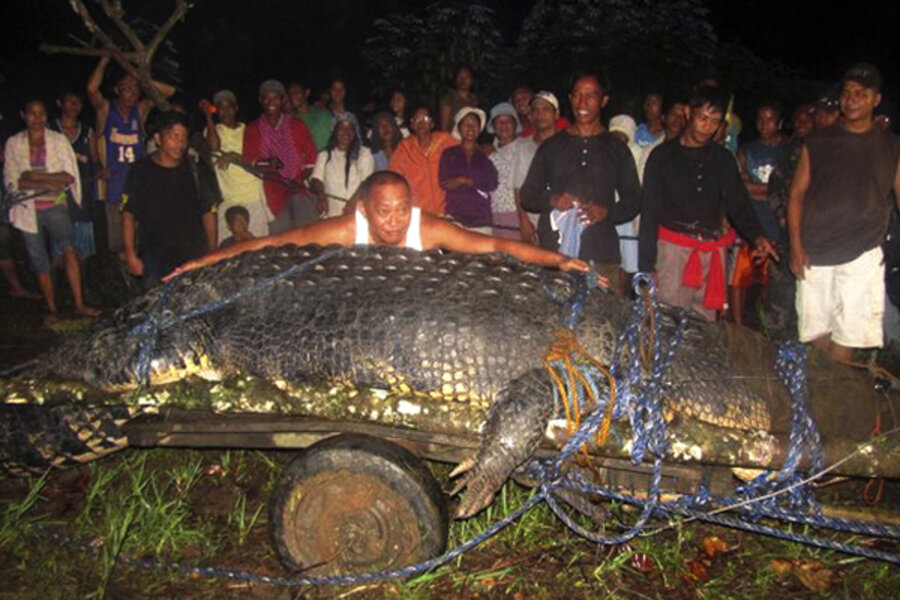 Giant Crocodile