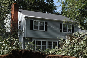 Two Large Fallen Trees Flank A House On Garfield Avenue In North Haven,  Conn., Aug. 31, 2011. High House Prices Make It More Profitable To Build  New Homes, ...