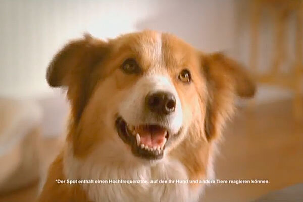 Purina Dog Food Commercial