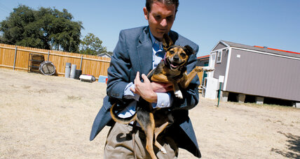 Ryan Clinton wants to make animal shelters 'no kill' zones