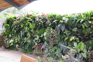 Beau Vertical Gardens: The Good, The Bad, The Ugly