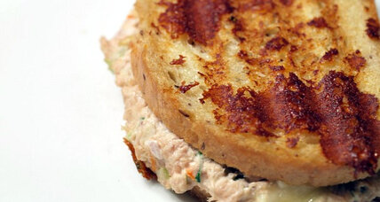 Tuna melt with muenster cheese