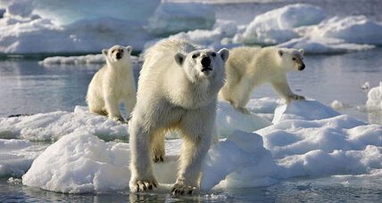 Discovery Channel to air full 'Frozen Planet' series despite controversy