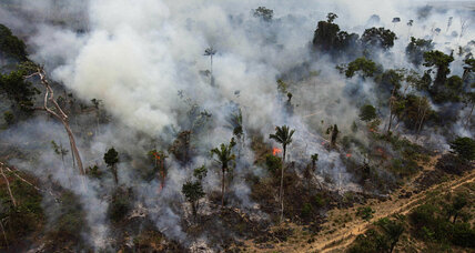 Why deforesters could soon have freer rein in the Amazon