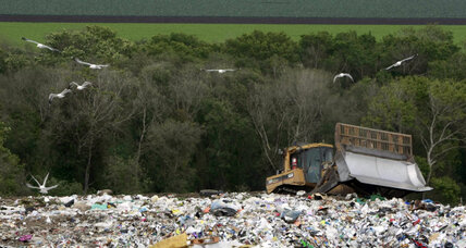 What a waste: Jonathan Bloom wants the US to reduce its food waste problem