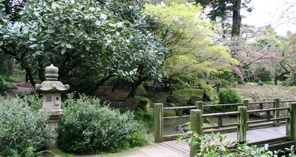 Tips for Japanese garden design